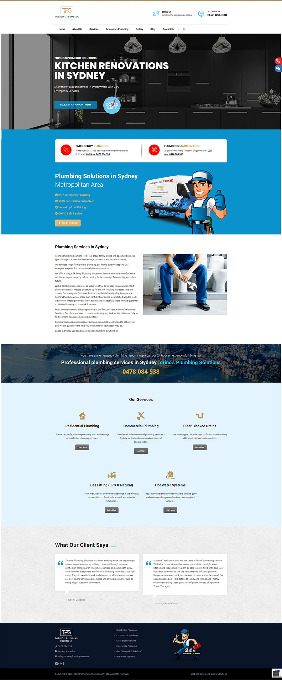 Torino's Plumbing Solutions - Home Page Design